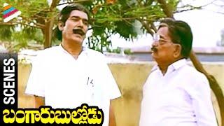 Allu Ramalingaiah Trolls Rao Gopal Rao   Bangaru Bullodu Telugu Movie Scenes   Telugu Filmnagar - TELUGUFILMNAGAR