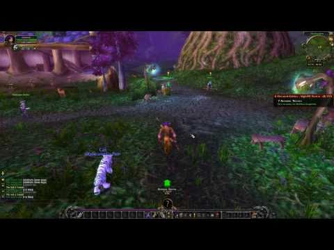 X-Elerated 1-85 WoW Leveling Guide - Horde and Alliance