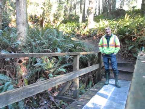 Bridge Repair in  a Park on Salt Spring Island, Canada