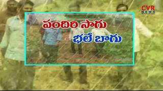 పందిరి సాగు..భలే బాగు | Young Farmers Success Stories in Mahabubabad | Foundation for Young Farmers - CVRNEWSOFFICIAL