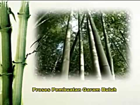 Garam Buluh Introduction
