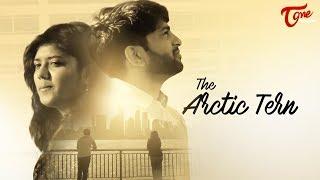 The Arctic Tern | Latest Telugu Short Film 2017 | By Varun Nalluri - TELUGUONE