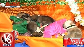 Dog 21st day celebrations - Teenmaar News - V6NEWSTELUGU