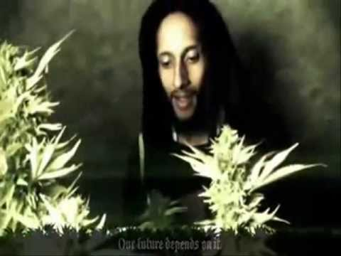 Julian Marley - Boom Draw - Official Video