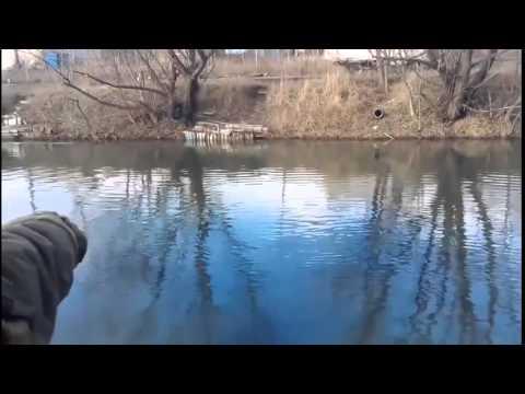 ловля рыбы гранатой видео