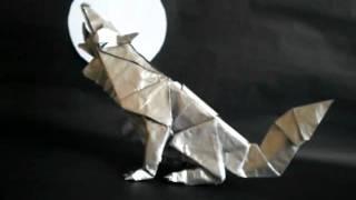 Lobo Gris Grey Wolf