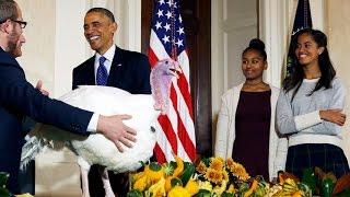 Obama pardons Thanksgiving turkeys - WASHINGTONPOST