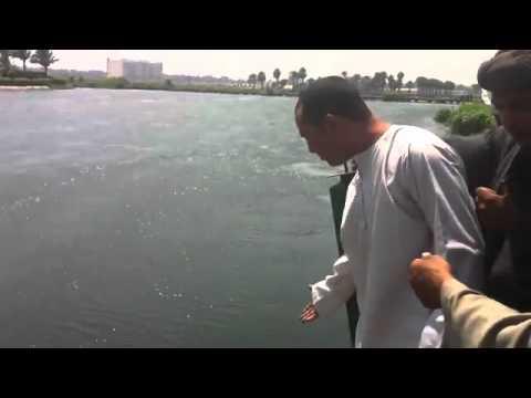 فيديو انهيار جسر الجزيرة فى المعادى