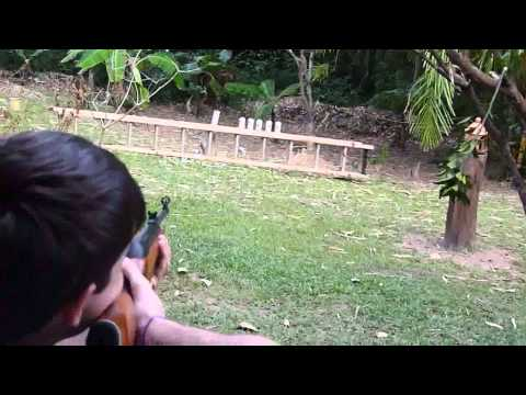 Atirando em 10 latas com carabina de pressão  / Shooting 10 cans with air rifle