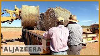 🇦🇺 Australia gives drought-stricken farms billion-dollar aid package | Al Jazeera English - ALJAZEERAENGLISH