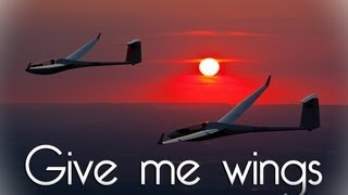 FSX - Give me Wings