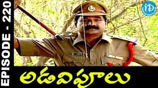 Adavipoolu || Episode 220 || Telugu Daily Serial - IDREAMMOVIES