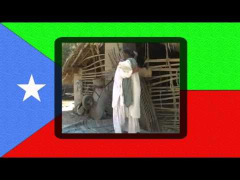 Panchen Darya - Balochi Revolutionary Song