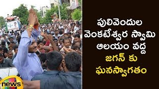YS Jaganmohan Reddy Receives A Grand Welcome In Pulivendla | YS Jagan Latest News | Mango News - MANGONEWS