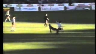 14J :: AC. Viseu - 2 x Sporting - 2 de 1988/1989