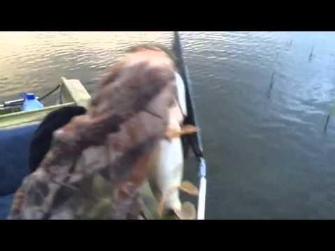 прогноз рыбалки в дагестане