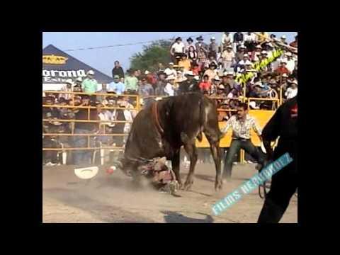 Las Montas Mas Dramaticas del Jaripeo en Michoacan con Mix De Sones En Vivo