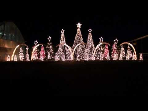 Amazing Grace Techno - Synchronized Christmas Light Show to Music