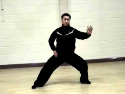 Chen Tai Chi Silk Reeling - Part 5