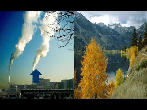 WWF Klimaskolen 1 Klimaendringer: 05 CO2