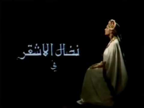 مقطع من مسلسل زنوبيا بطولة نضال الاشقر