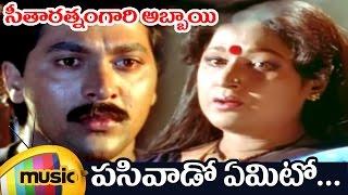 Seetharatnam Gari Abbayi Movie | Pasivado Yemito Telugu Video Song | Roja | Vinod Kumar | Vani Shri - MANGOMUSIC