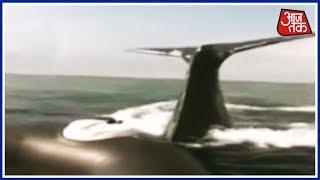 समन्दर में whale अटैक, कैमरे में हुआ कैद - AAJTAKTV