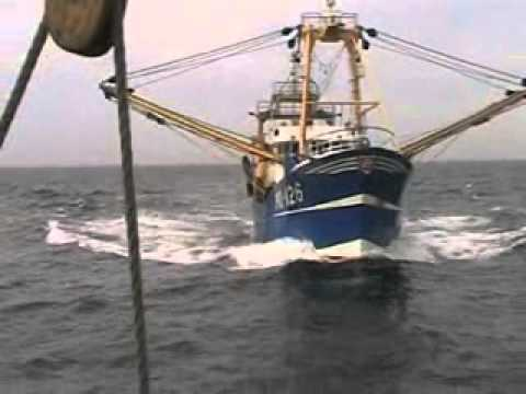 Fishing Vessel hits large Sailing Vessel in Good Visibility 20 8 2010