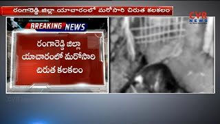 చిరుత పులి హల్ చల్ | Leopard Assassination 4 Goats in Kothapally | Yacharam | Ranga Reddy | CVR NEWS - CVRNEWSOFFICIAL