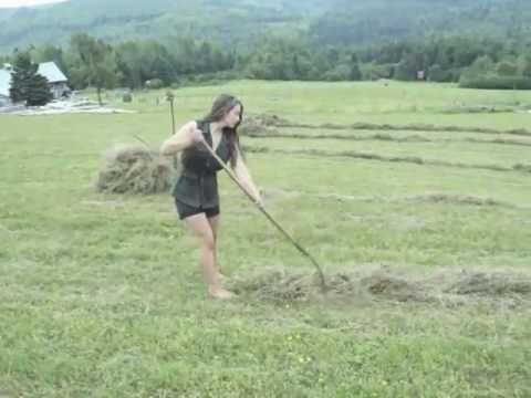The Hay Pusher