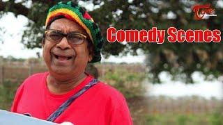 Brahmanandam Comedy Scenes Back to Back || NavvulaTV - NAVVULATV