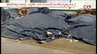 Cyclone Phethai Effect on Warangal district | Farmers Suffer Due To Heavy Rains | CVR News - CVRNEWSOFFICIAL