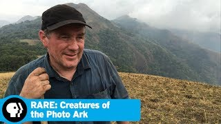 RARE: CREATURES OF THE PHOTO ARK | The Life of a Photographer | PBS - PBS