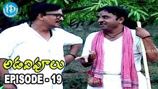 Adavipoolu || Episode 19 || Telugu Daily Serial - IDREAMMOVIES