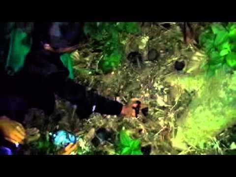 Expedisi Mistis - Penarikan Mustika di Makam Datuk Syech Abdullah