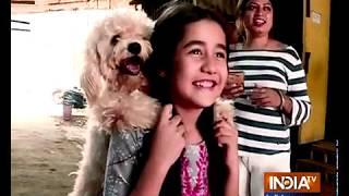 Kullfi Kumarr Bajewala's latest emotional sequence will bring tears in your eyes - INDIATV