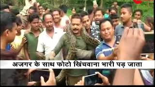 Watch: Forest officer in New Jalpaiguri miraculously escapes after a Phython tries to strangle him - ZEENEWS