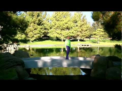 DVD Preview-Hello Tai Chi, Goodbye Stress with Kim Kubsch.mp4