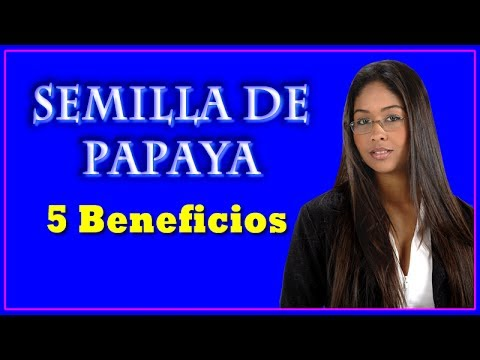 Semilla de Papaya -  5 Beneficios de la Semilla de Papaya