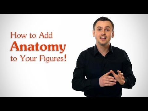 How to Add Anatomy to Your Figures