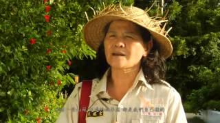 社區生態旅遊影片 專區