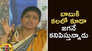 YCP MLA Roja Funny Comments On AP CM Chandrababu Naidu | Roja Full Press Meet | Mango News - MANGONEWS