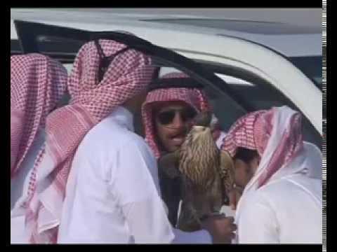 هدد نو سقنل على كانون زاجل عبيد فخرو تعليق حمد بن سعيد آل جميله