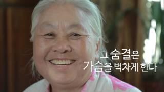 문체부 대한민국 자긍심