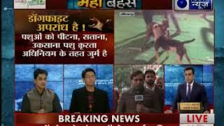Delhi, हरियाणा और पंजाब में चल रहा 'डॉग फाइट' के खूनी खेल से करोड़ों का कारोबार: MahaBahas - ITVNEWSINDIA