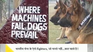 DNA: Watch to know about the 'silent warriors' of Indian Army - ZEENEWS