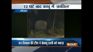 Elephant captured by the forest officials in Haridwar - INDIATV