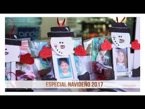 Especial Navideño 2017