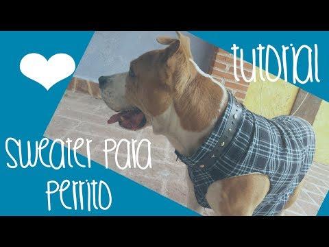 ♥Cómo hacer un sweater / chaleco para perro♥