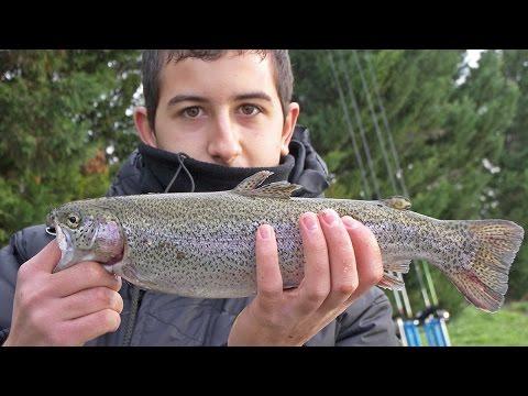 Pesca alla trota in lago con vetrino e bombarda al Lago Salice a Foggia - Pescanet TV